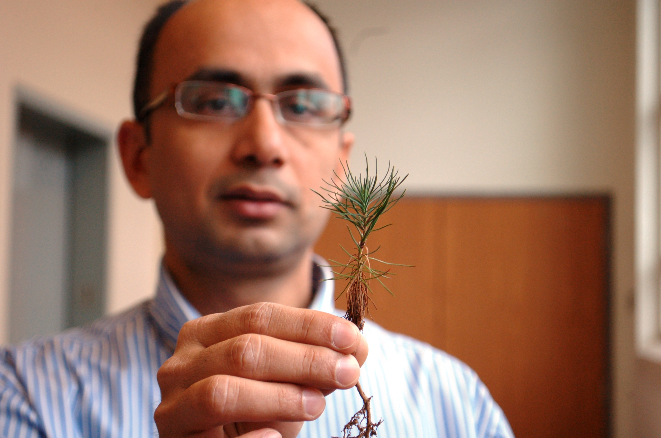 Photo of Sushil Adhikari, researcher in biosystems engineering