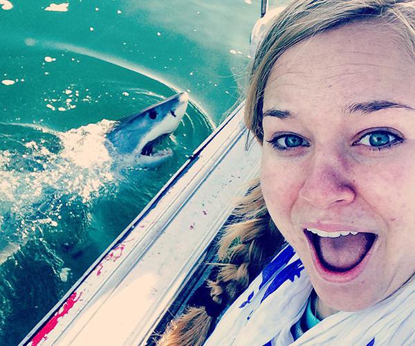 Senior spends summer studying mega-sharks