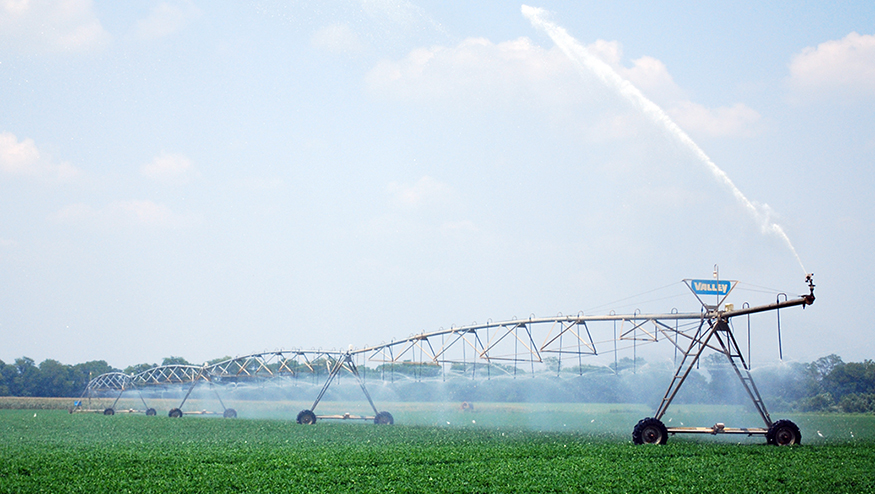 Photo of a field irrigation system