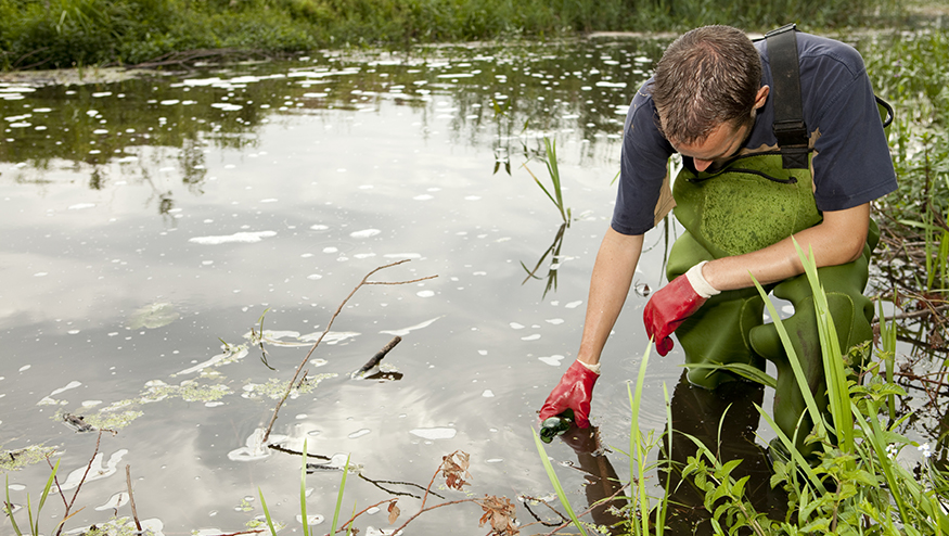 Photo of researcher retrieving water sample from pond