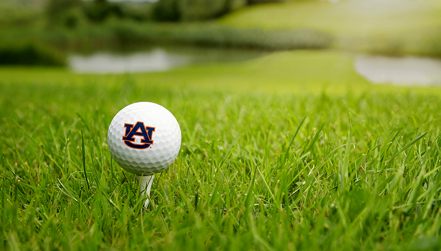 Collaboration with STRI Group to enhance Auburn sports turf research