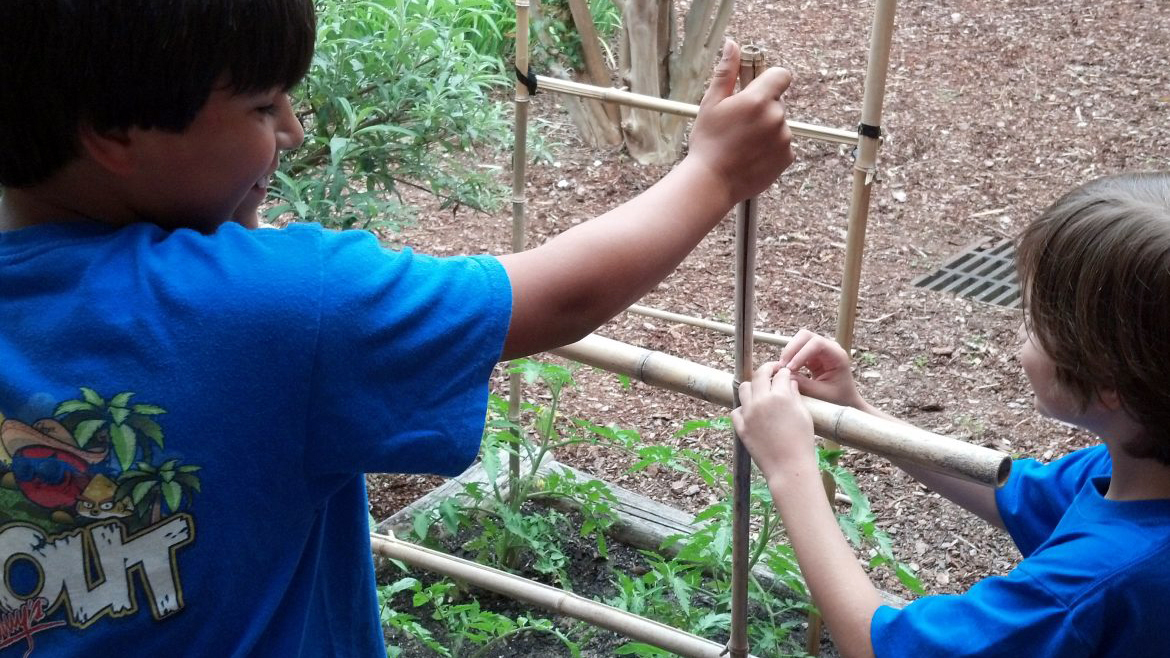 Elementary school kids learn to garden with Auburn's Horticulture