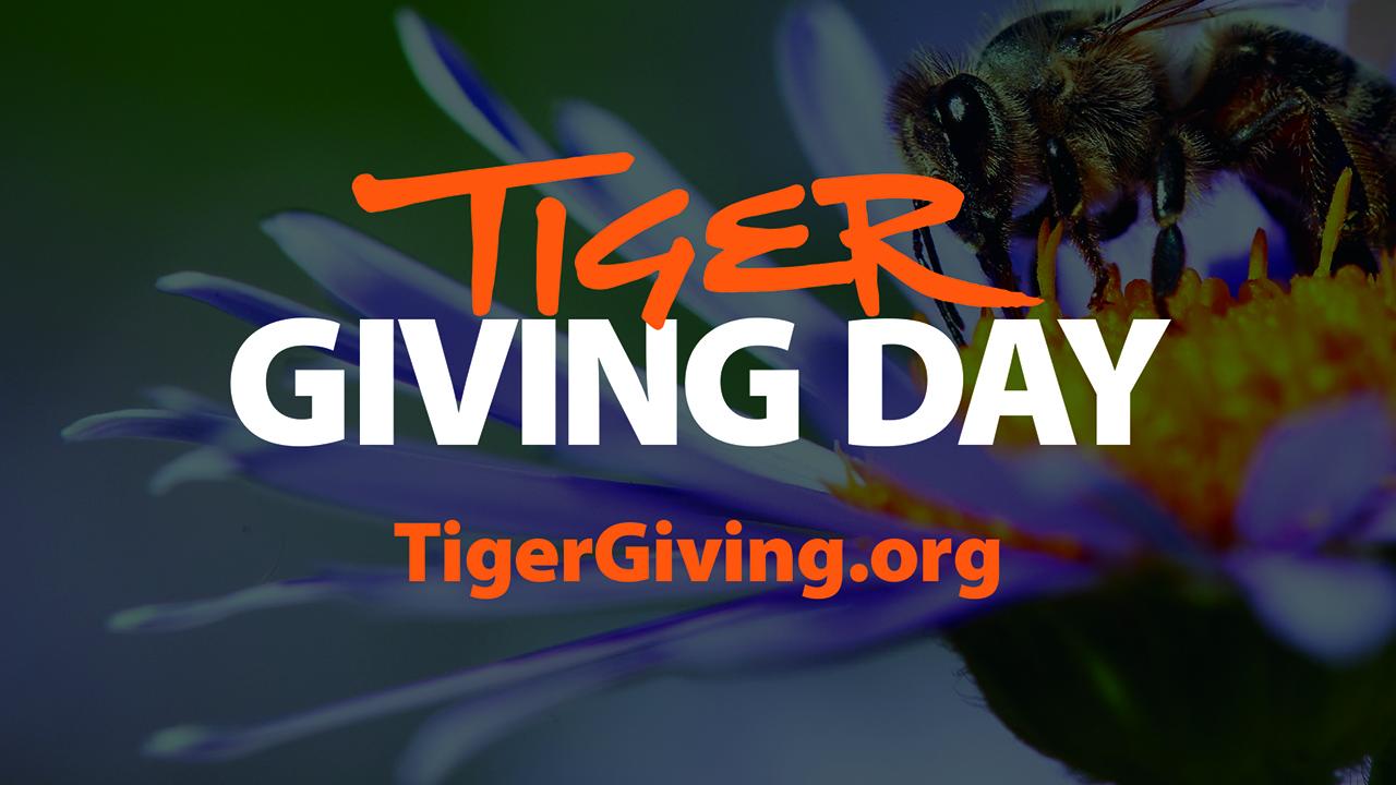 Tiger Giving Day, Auburn ENPP Honey Bee on flower bg