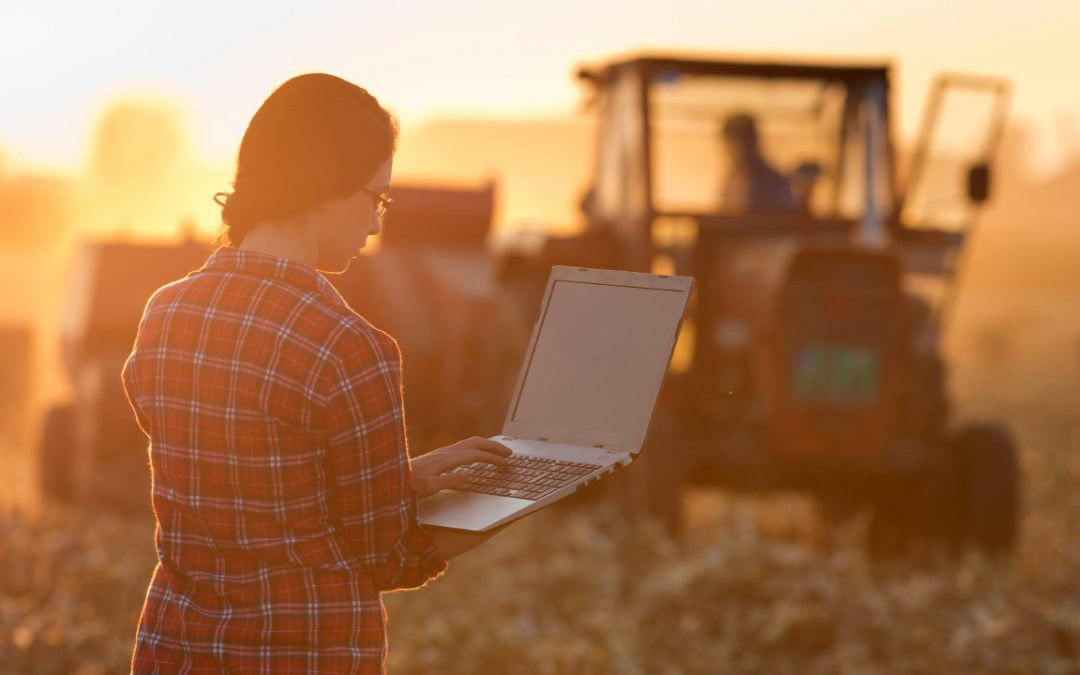 """Online programs in the Department of Crop, Soil and Environmental Sciences continue to be a """"Best Buy"""" among science-based programs for out of state students."""