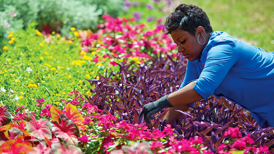 Abra planting a flower bed, southern female African American student, major in Horticulture degree.