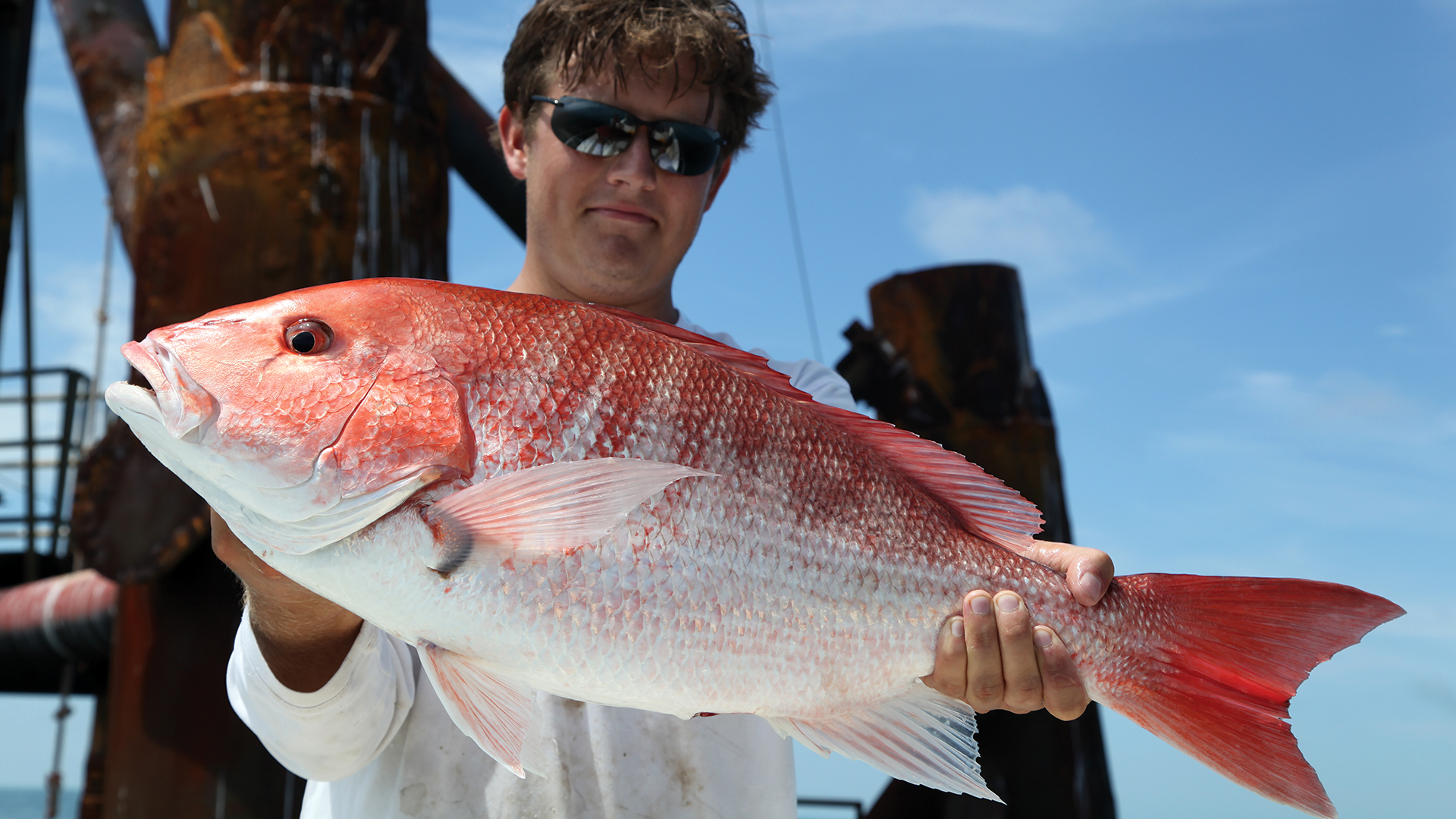 Auburn, AL, Fisheries student catches and holds up a Red Snapper marine fish, Lutjanus campechanus, on a dock in the Gulf of Mexico.