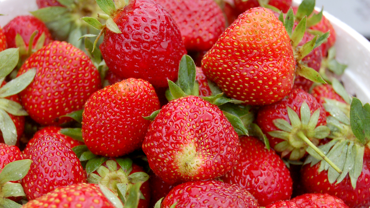 Strawberries, pictured here, will be for sale during The Market's first few weeks while they are still in season