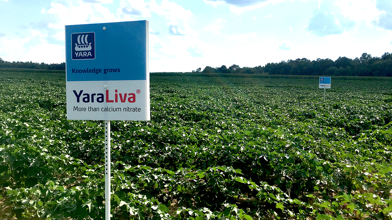 A sign for YaraLiva stands in front of a long range of crops