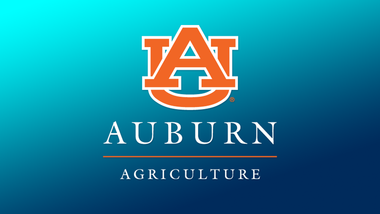 Default placeholder image, Auburn University, AL, College of Agriculture - Interlocking AU Logo