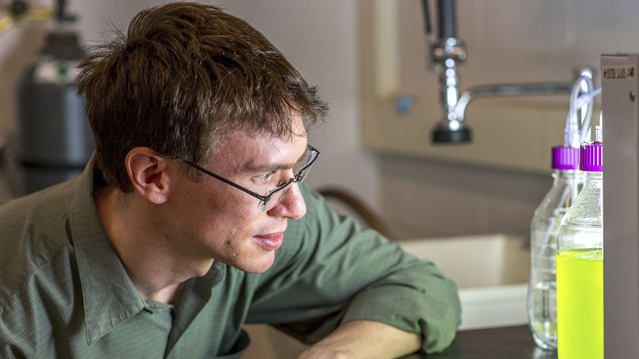 USDA funded Brendan Higgins, Assistant Professor, Auburn University, Fish feed wastewater nutrition research in lab, Alabama, USA