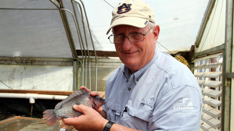 Aquaponics, Aquaculture researcher holding a fish with Auburn University hat