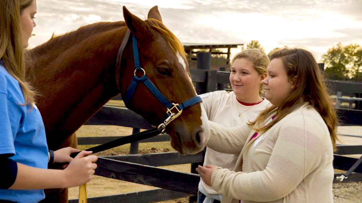 Auburn University College of Ag & Veterinary Medicine students with a brown horse.