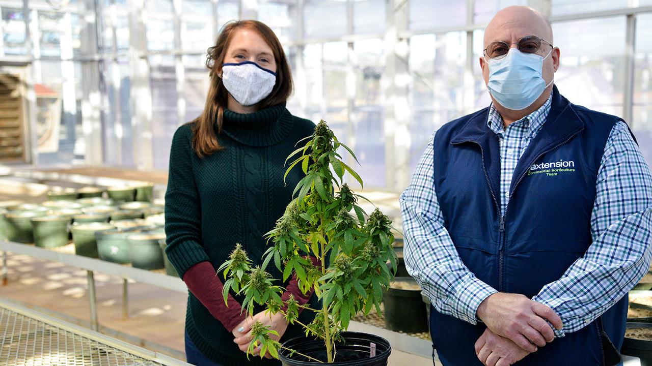 Auburn-Alabama-Industrial-Hemp-Production-Grow-Farm-Bill-Crop-Buds-Fiber-Extraction-Marijuana-Weed-PAR-Grant