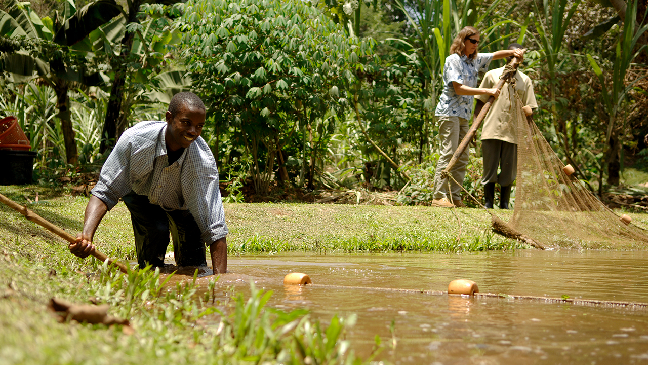 Auburn-Fisheries-Research-Project-Outreach-Aquaculture-Uganda-Africa