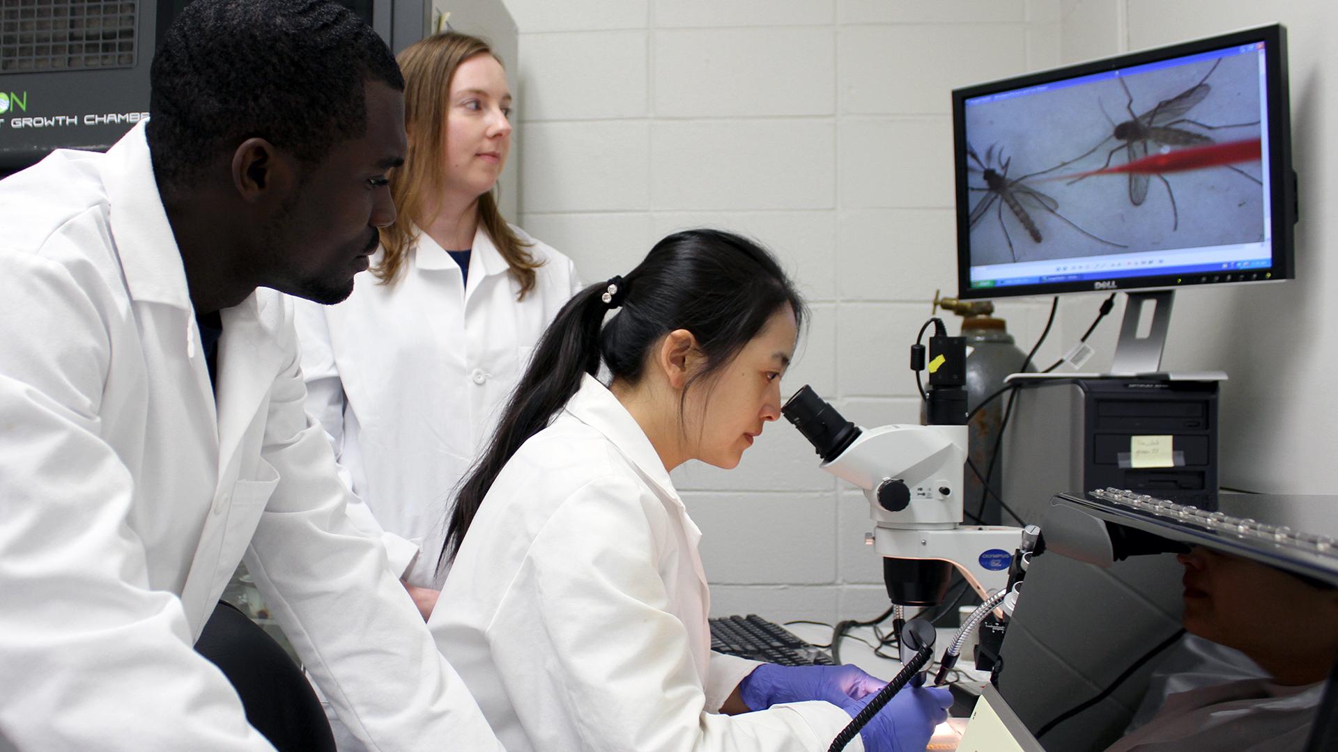 Applied-Biotechnology-Major-Auburn-Alabama-Degree-USA-Entomology-Students-Mosquito-Research-Lab-Coats