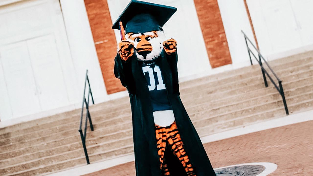 Aubie-the-Tiger-in-Graduation-Cap-n-Gown-Auburn-University-Seal-Alabama-USA