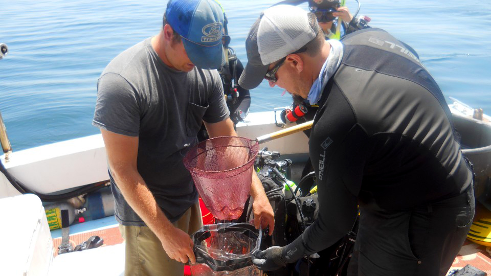 Auburn-Gulf-of-Mexico-Coast-Research-on-Boat-Vessel-Seas-Major-in-Fisheries-Aquaculture-Aquatic-Sciences-Marine-Resources-Management-0219