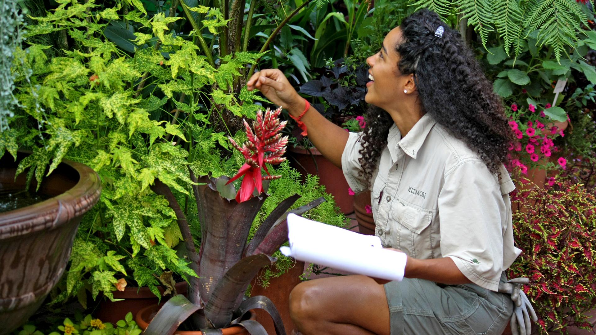 Biltmore-Estate-Ashville-North-Carolina-Internship-Landscape-Horticulture-Major-Degree-Student-Molly-Dutton-Beautiful-Flowers-Green-Leaves-Plants-5799