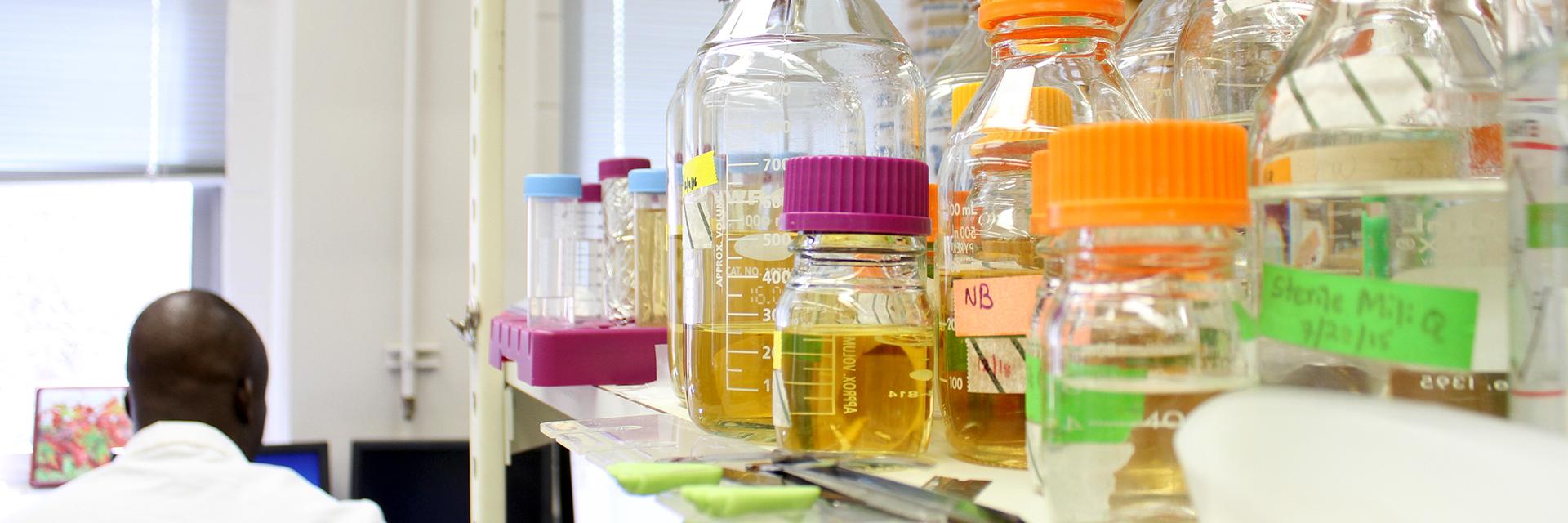 Entomology-Major-Researcher-in-Lab-Glass-Beakers-Viles-Fluids-sm