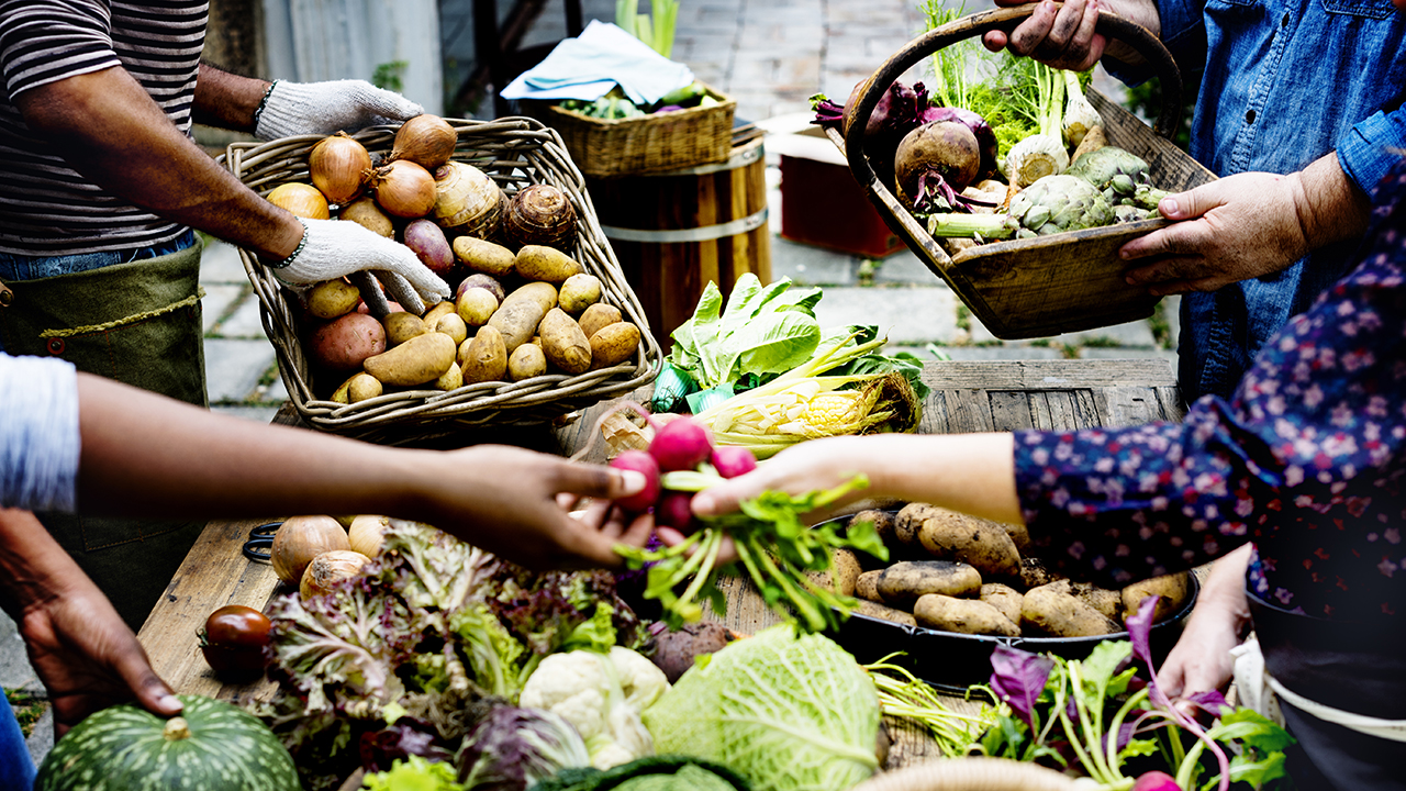 Market-selling-fresh-vegetables-Horticulture-Major-in-Fruit-Vegetable-Production