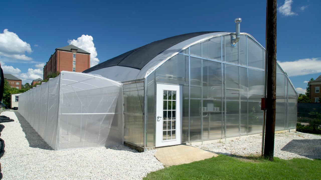 Paterson-Greenhouse-Nursery-Complex-Growning-Research-Facility-Sunny-Day-in-Auburn-Alabama-USA