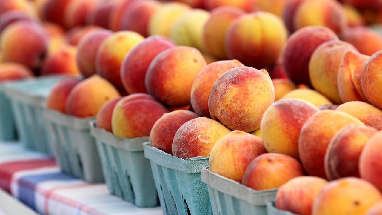 Picnic-baskets-full-of-fresh-local-organic-peaches-food-fruit-piles-plaid-table-cloth-Auburn
