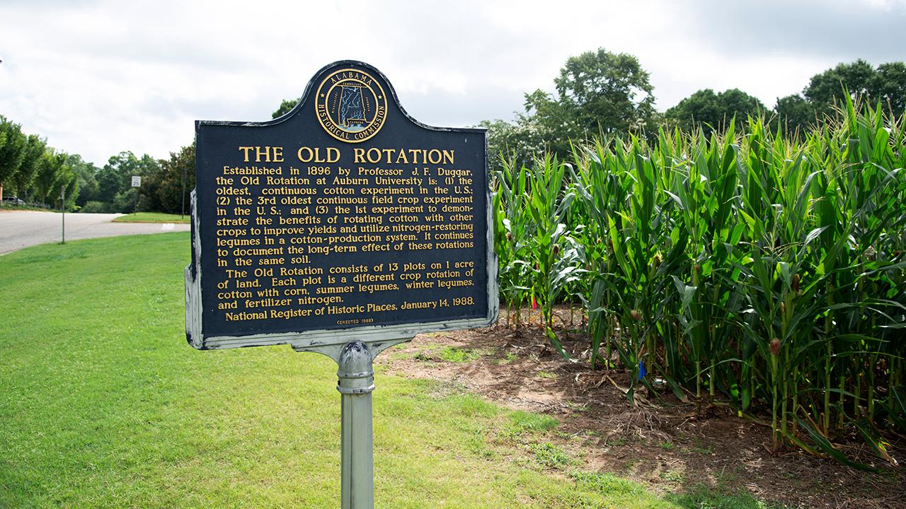 The-Old-Rotation-Auburn-University-AL-Historic-Marker-Crop-Experiment