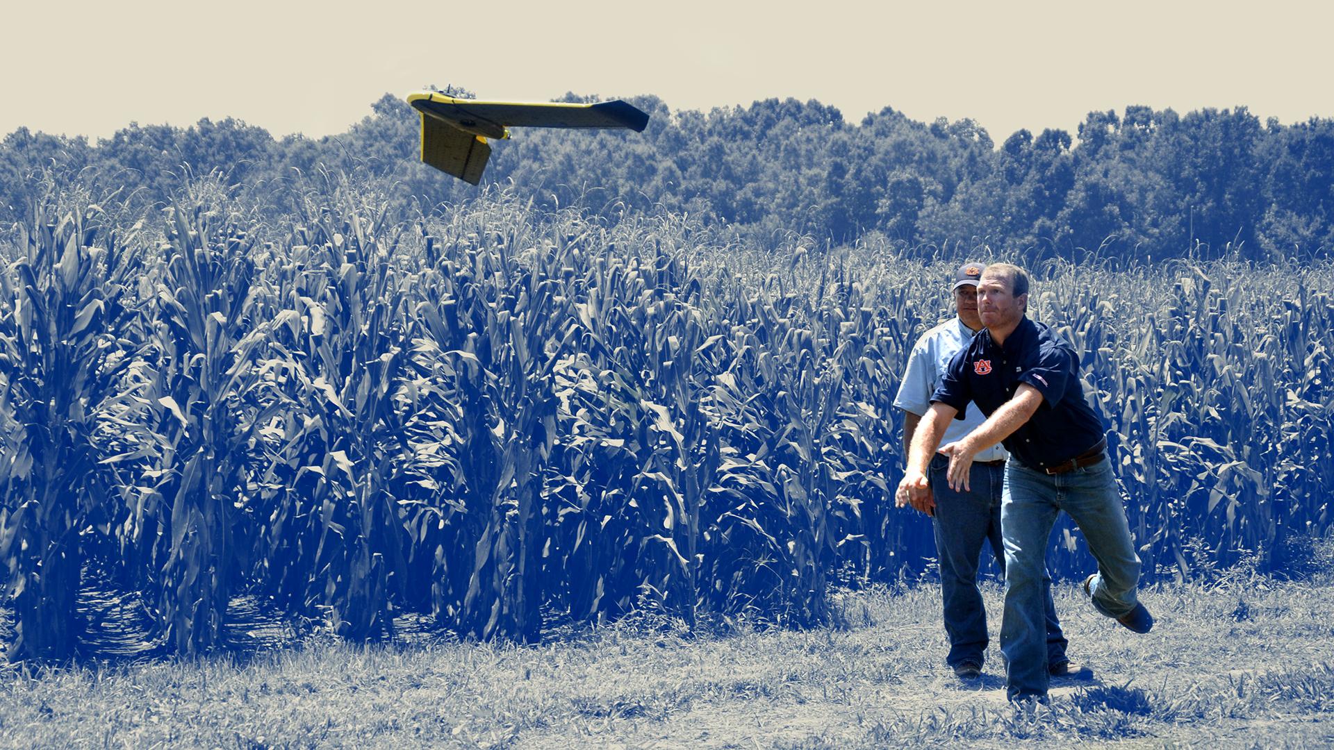 UAS-UAV-Biosystems-Engineering-Farm-Field-Launch-Drone-Auburn-Agriculture