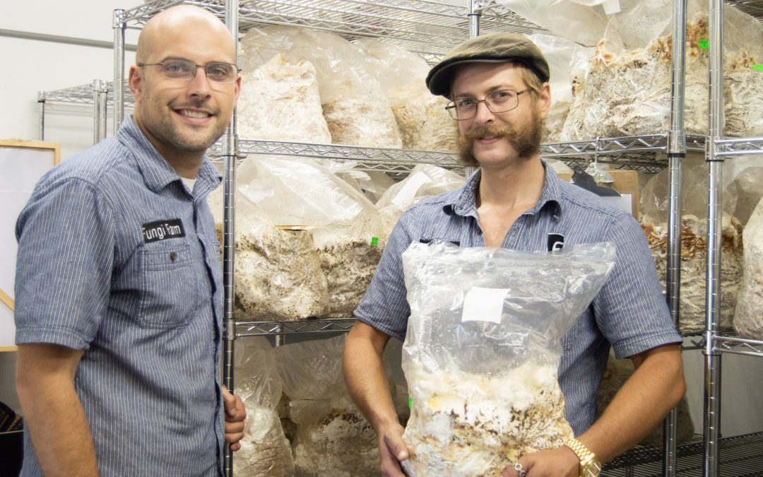 Alumni chart new course for mushroom cultivation in the South
