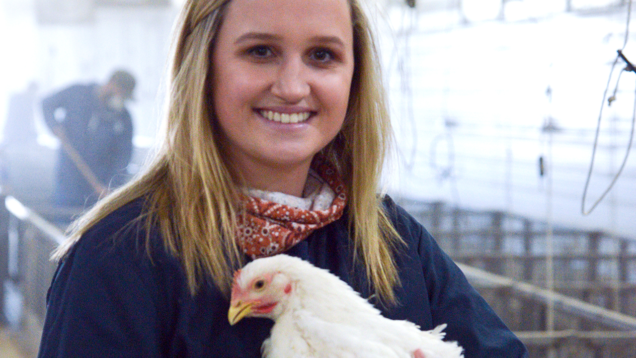 Auburn-Student-Majoring-in-Poultry-Science-holding-a-chicken-at-the-Miller-Poultry-Center-Alabama-0725