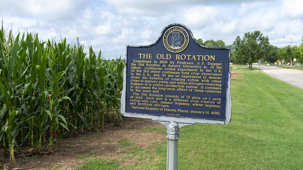 The Old Rotation, Auburn University, Cotton Crop Experiment, National Register of Historic Places, AL, USA