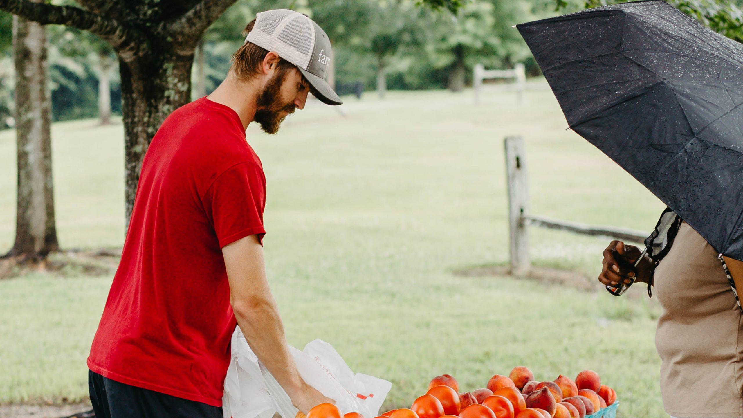 Farmer sells tomatoes at ag heritage park market