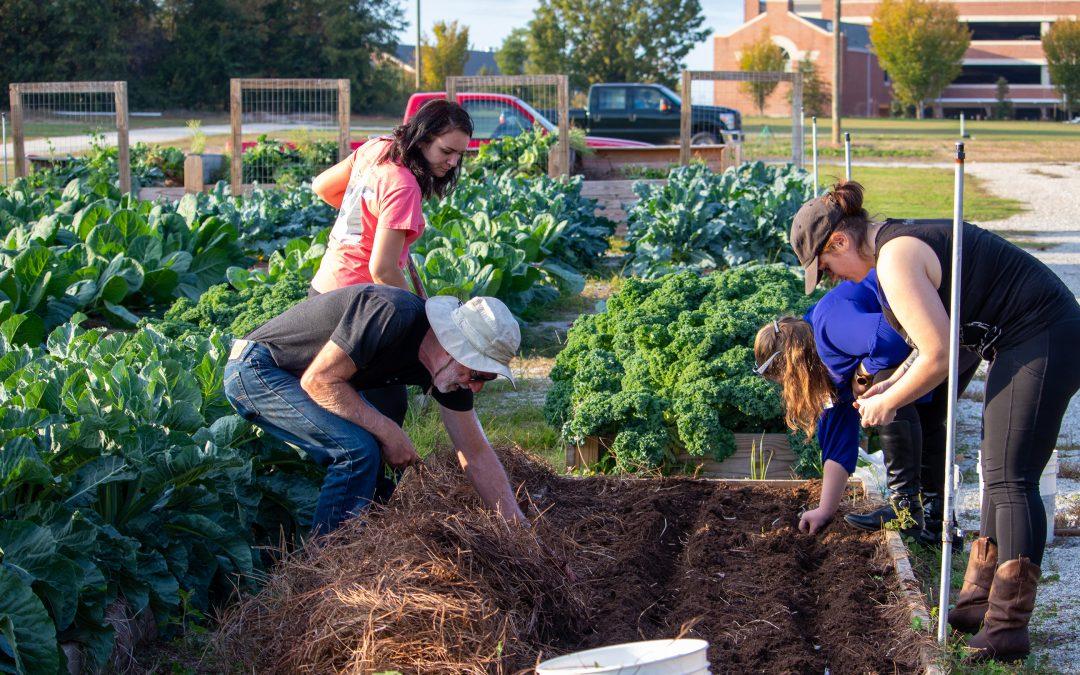Board of Trustees approves construction of Transformation Garden