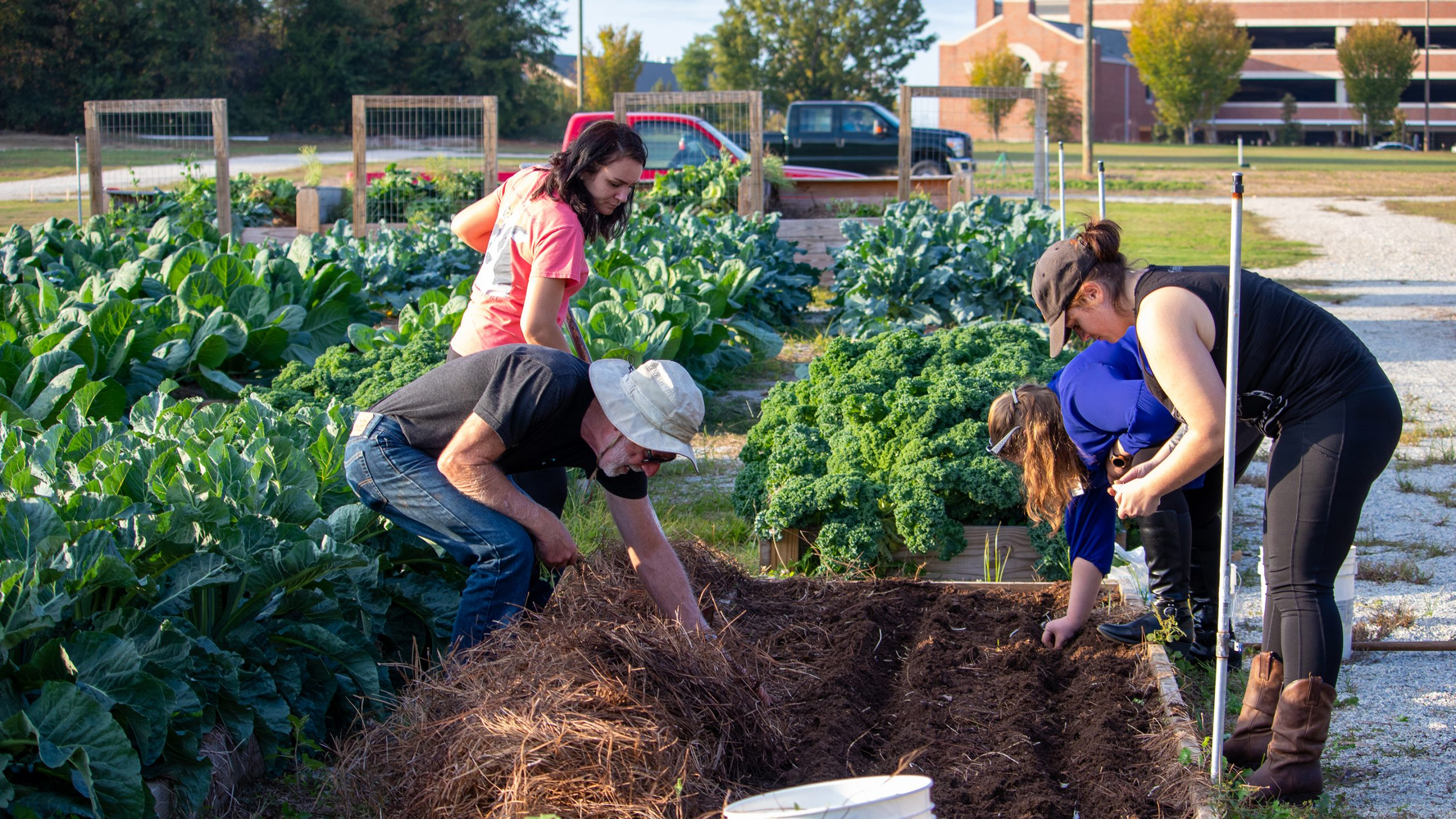 Students and faculty work in a small garden plot at the Transformation Garden