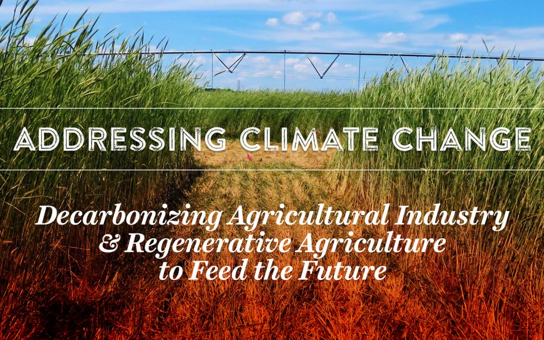 Addressing Climate Change: Decarbonizing Agricultural Industry & Regenerative Agriculture to Feed the Future
